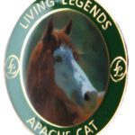 Apache Cat the face of racing limited edition badges